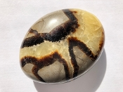 Septarian XL Palm Stone 5